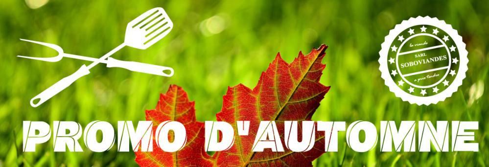 Promo d automne bandeau