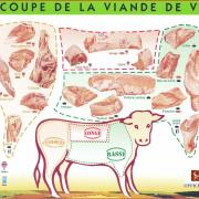 schema decoupe viande veau